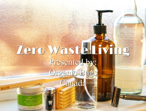 Workshop: Zero Waste Living